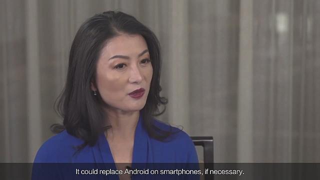 Rozmowa z panią Joy Tan - 2019-11-26